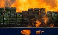 Cảnh sát Myanmar đánh tráo ma túy trị giá gần một triệu USD