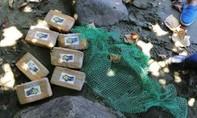 Số ma túy trị giá gần 1 triệu USD dạt vào bờ biển Philippines