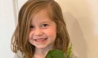 Bé gái 6 tuổi tử vong vì bị quả bóng golf của cha văng trúng