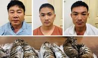 Phá đường dây buôn bán 7 con hổ xuyên quốc gia
