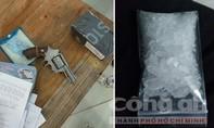 Phá đường dây buôn ma túy có súng ở Đồng Nai