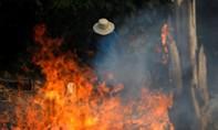 Rừng Amazon cháy ngùn ngụt, dấy lên lo ngại toàn cầu