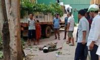 Một công nhân cắt tỉa cây xanh bị cành cây rơi trúng, thiệt mạng