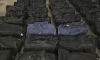 Đức phát hiện gần 5 tấn cocaine trong container chở đậu nành