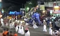 Clip 'voi điên' tấn công đám đông tại lễ hội, 18 người bị thương