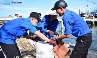 Sinh viên tình nguyện thu gom rác thải tại các bãi biển Việt Nam