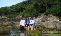 Đà Nẵng thống nhất đề án du lịch Nam Ô của Tập đoàn Trung Thủy