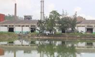 Khẩn trương xử lý dứt điểm sự cố môi trường tại nhà máy cồn Đại Tân
