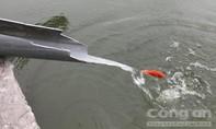 Người dân hào hứng thả cá chép qua máng trượt tránh ô nhiễm