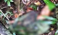 Súng cướp cò, người đàn ông tử vong khi đi săn