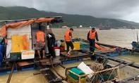 Đà Nẵng nhiều tàu cá chìm, 4 người mất tích