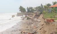 Bờ biển Hội An tiếp tục sạt lở nghiêm trọng, chưa có dấu hiệu dừng lại
