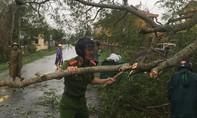 Công an và lực lượng chức năng khắc phục thiệt hại do bão số 13 tại TT-Huế