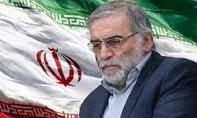 Nhà khoa học nghi đứng đầu chương trình hạt nhân Iran bị ám sát