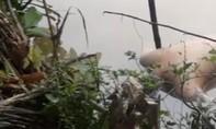 Phát hiện xác chết lõa thể dưới sông Bảo Định