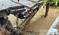 Cầu hư hỏng nặng, hàng chục học sinh thấp thỏm đến trường