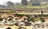 """Thuỷ điện """"ngốn"""" hơn 100 ha rừng bị tố làm sạt lở đất của dân"""