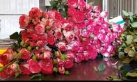 """Hoa hồng Đà Lạt bị """"thất sủng"""" vì Valentine trùng mùa Covid-19"""
