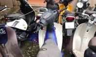 Tìm chủ sở hữu 9 xe máy đang tạm giữ
