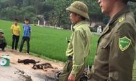 Người dân vây đánh thương vong 2 thanh niên nghi trộm chó