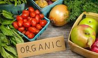 Lý do nên chọn thực phẩm hữu cơ cho trẻ