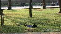Người đàn ông mặc đồ bảo vệ chết trong công viên ở Sài Gòn