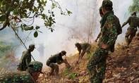Hơn 600 người chữa cháy rừng ở khu vực thuộc núi Cấm