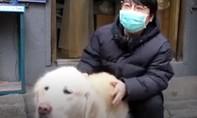 Clip chú chó đưa cơm cho chủ mỗi ngày giữa tâm dịch Covid-19