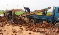 Hệ lụy khôn lường từ việc ồ ạt bán đất mặt ruộng giữa mùa khô hạn