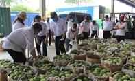 """Vedan Việt Nam """"giải cứu"""" xoài cho nông dân"""