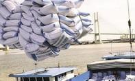 Đề nghị Bộ Công an điều tra thông tin có tiêu cực trong xuất khẩu gạo