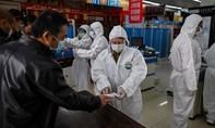 Nghi vấn Trung Quốc biết các ca nhiễm nCoV từ tháng 11 năm ngoái