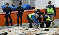 Cảnh sát Tây Ban Nha bắt tàu chở 4 tấn cocaine