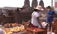 Clip vắng du khách vì dịch, người dân Thái Lan phải góp trái cây cho bầy khỉ