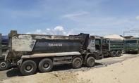Bà Rịa - Vũng Tàu: Tạm giữ 10 xe ben, 4 xe cuốc khai thác cát trái phép