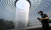 Singapore xin lỗi 357 người vì nhầm kết quả xét nghiệm nCoV
