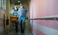 Thế giới đã có hơn 3,5 triệu người nhiễm nCoV