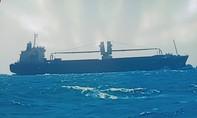Tàu cá bị tàu hàng tông chìm, 6 ngư dân nhảy xuống biển