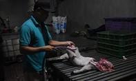 Đồng Nai: Tăng cường kiểm tra, xử lý các lò mổ heo lậu