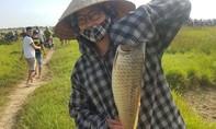 Hào hứng, sôi động lễ hội đánh bắt cá tại Hà Tĩnh