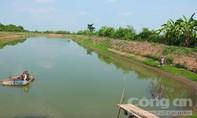 Nông dân phá sản vì huyện cho thuê đất công không qua đấu giá