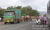 An Giang nói gì về thông tin Campuchia cấm nhập 6 loại nông sản?