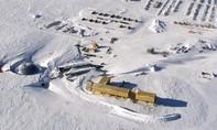 Nam Cực ấm lên với tốc độ gấp 3 lần mức trung bình Thế giới