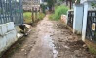 """Huyện Phú Quốc: Biến đất hẻm chung thành """"của riêng""""?"""