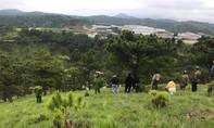 Đà Lạt: Cô gái tự tử gần cây thông cô đơn vì nợ nần không trả được