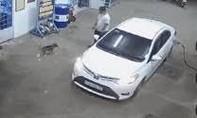 Clip người đàn ông đi ôtô vào đổ xăng, rồi bắt trộm chó