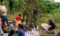 Lâm Đồng: Vây bắt sòng xóc đĩa trong rẫy cà phê