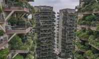 Hàng ngàn người rời bỏ 'chung cư xanh' đắt tiền ở Trung Quốc vì... muỗi
