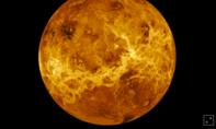 Phát hiện có dấu hiệu sự sống trên khí quyển Sao Kim