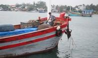 Hơn 12.000 ngư dân Quảng Nam, Quảng Ngãi còn ở ngoài khơi